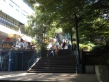 Route To Pike Place Market to Waterfront Park