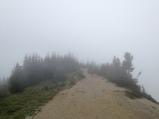 005 hiking thru the fod